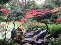 chinese_garden_03