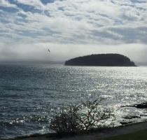 bar_harbor_06