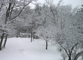 snow_06