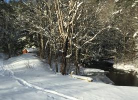 snow_08