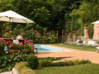 The garden and pool