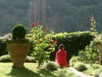 Lucy in the Garden